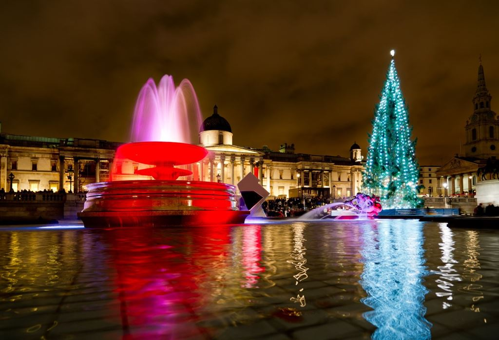 Adventní Londýn - hlavní vánoční strom na Trafalgarském náměstí